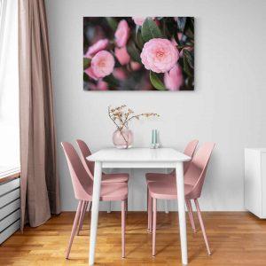 Розова Камелия