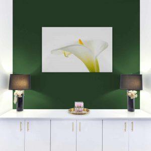 Картина от канава с цвете - калия - за стена